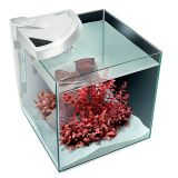 Newa More NMO30 Aquarienset